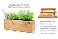Thumbnail image for Apartment Food Garden Kit