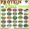 Thumbnail image for Protein in Plant Foods