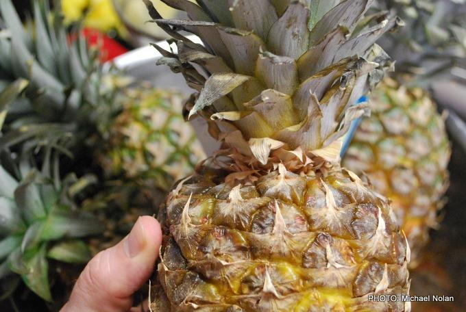 UrbanFig: Pineapple