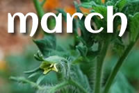 Post image for What to Plant for the Garden in March