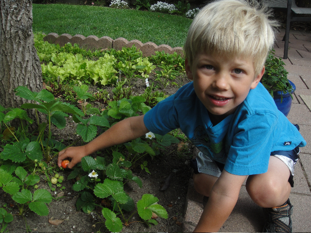 Alex tending the garden