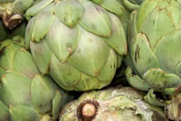 UrbanFig: How to Grow Artichokes