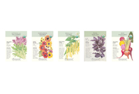 Thumbnail image for 5-Pack Seed Deal (Free Shipping)