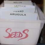 seed organization