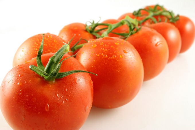 Perspective view of a line of vine tomatoes with shallow depth of field
