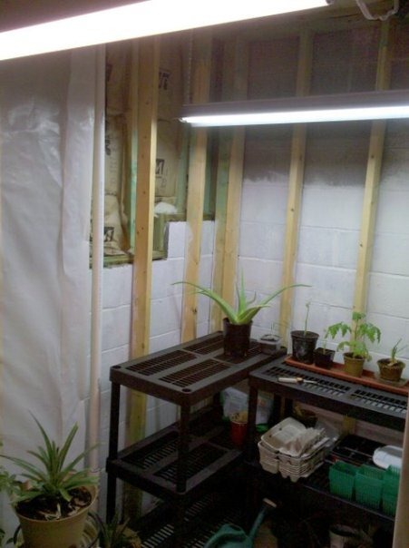 UrbanFig: Plant Grow Lights