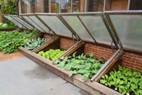UrbanFig: Cold Frame