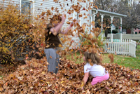 UrbanFig: Composting Fall Leaves