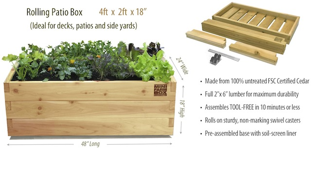 Rolling Patio Box